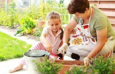 Занятия садоводством